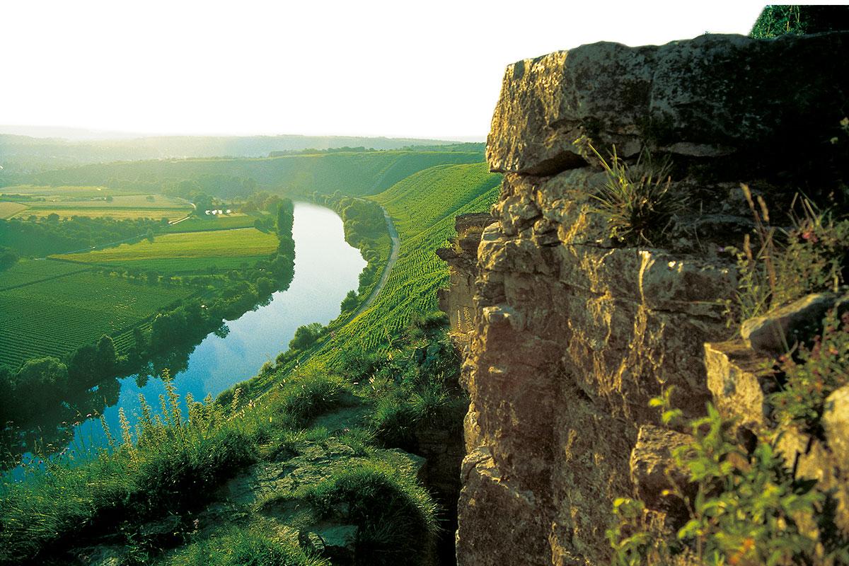 Felsengärten Hessigheim Wein